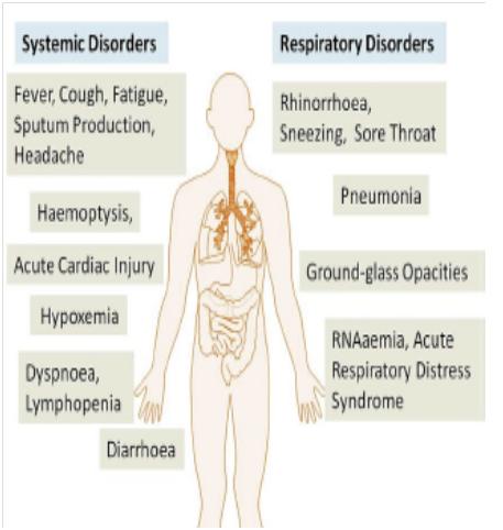 ncov the Signs & Symptoms